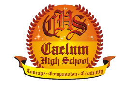 Caelum High School